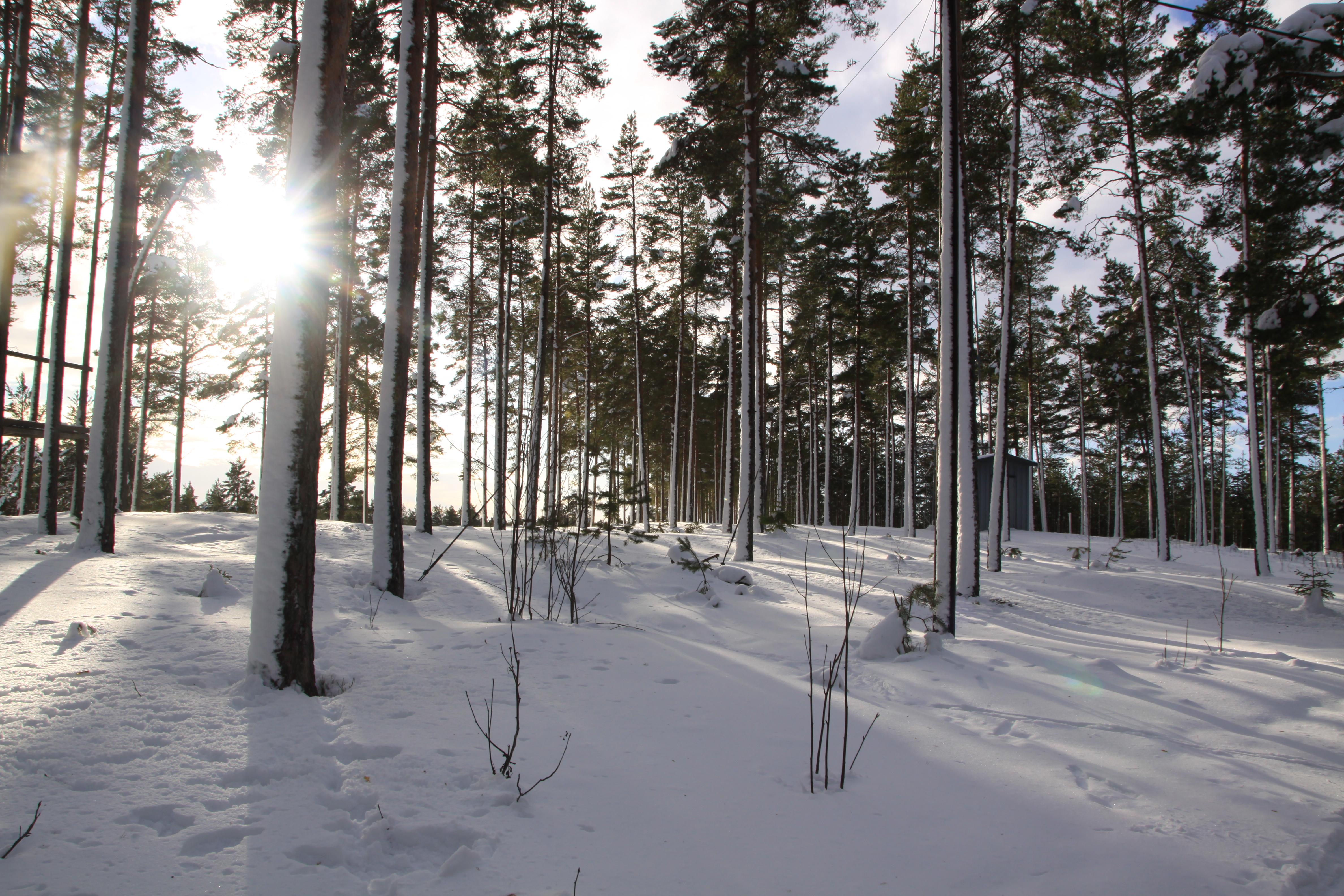 Vacker dag i Valbo! (Foto: Minna Sunesson)