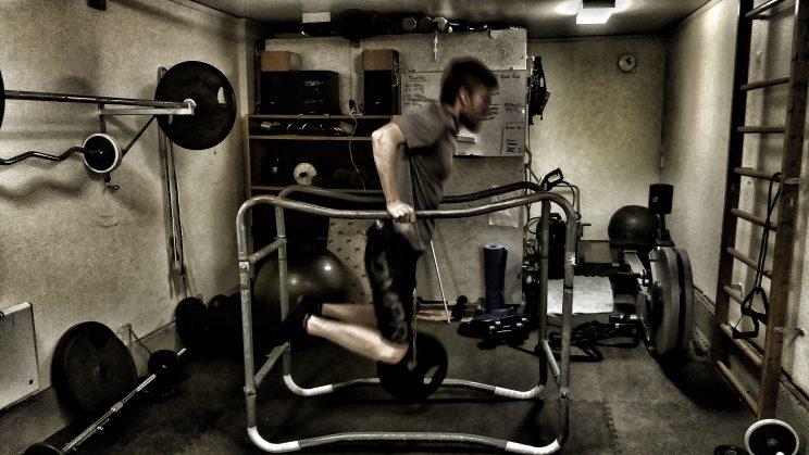 styrketräning längdskidor dips