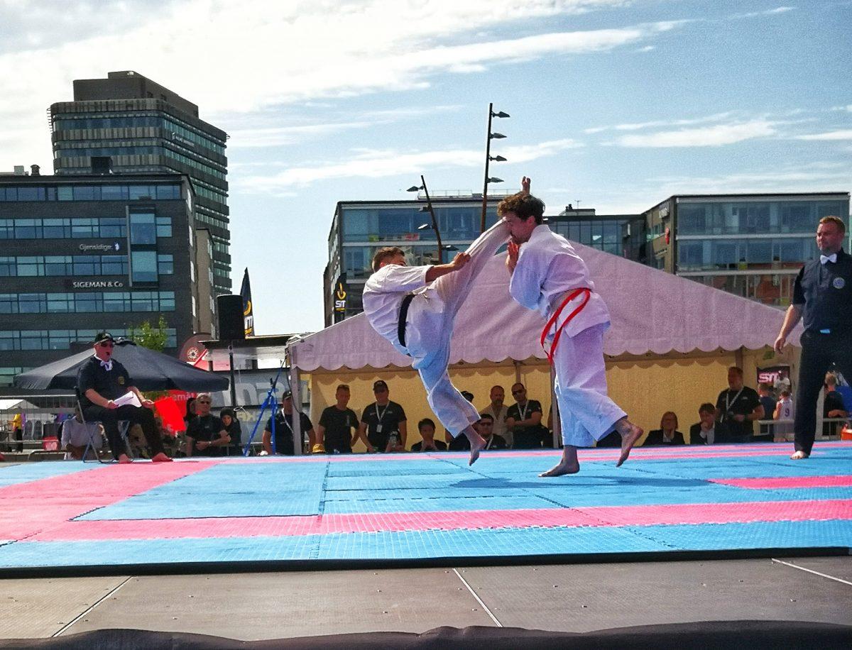 SM veckan karate